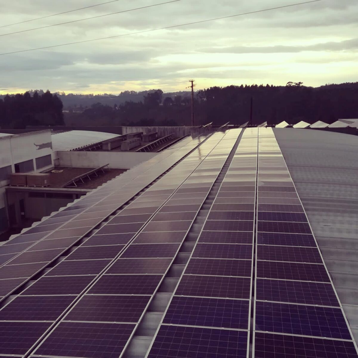 Solar Dairy Azeméis
